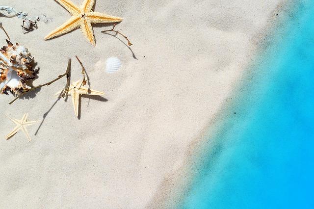 plage etoile de mer